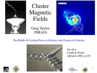 Cluster Magnetic Fields Greg Taylor (NRAO)