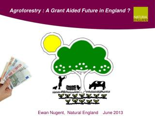 Agroforestry : A Grant Aided Future in England ?