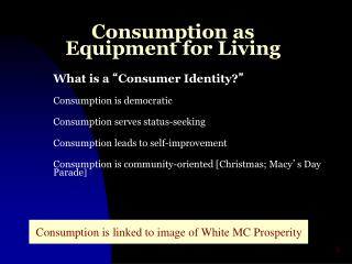 Consumption as Equipment for Living