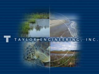 Coastal Processes Analysis for Vilano Beach, St. Johns County, FL Taylor Engineering, Inc.