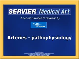Arteries - pathophysiology