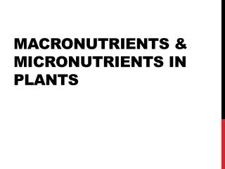 MACRONUTRIENTS & MICRONUTRIENTS IN PLANTS