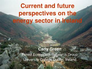 Current and future perspectives on the  energy sector in Ireland