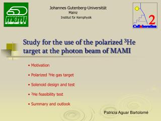 Motivation  Polarized  3 He gas target  Solenoid design and test 3 He feasibility test