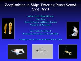 Zooplankton in Ships Entering Puget Sound  2001-2005