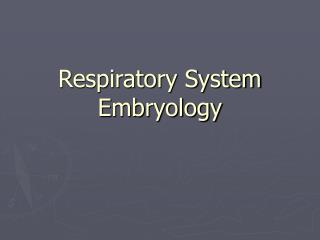 Respiratory System Embryology