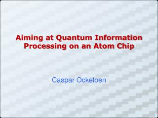 Aiming at Quantum Information Processing on an Atom Chip