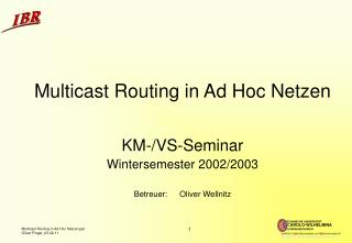 Multicast Routing in Ad Hoc Netzen