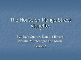The House on Mango Street Vignette.