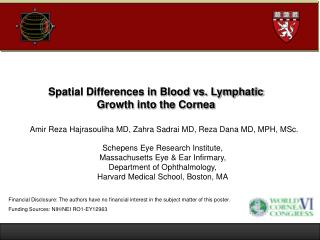 Spatial Differences in Blood vs. Lymphatic  Growth into the Cornea