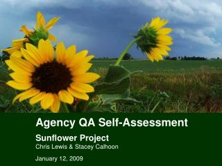 Agency QA Self-Assessment Sunflower Project Chris Lewis & Stacey Calhoon
