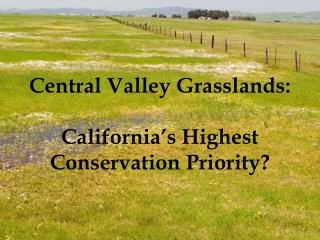 Central Valley Grasslands:   California s Highest Conservation Priority