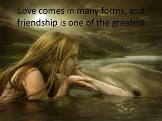 Love comes in many forms, and friendship is one of the greatest