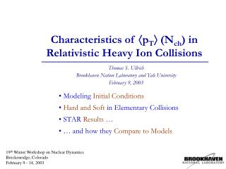 Characteristics of  p T   (N ch ) in Relativistic Heavy Ion Collisions