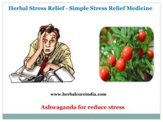 Herbal Stress Relief - Simple Stress Relief Medicine