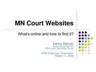 MN Court Websites