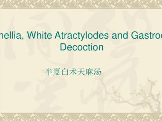 Pinellia, White Atractylodes and Gastrodia Decoction