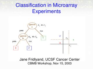 Classification in Microarray Experiments
