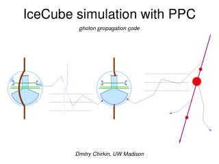 IceCube simulation with PPC