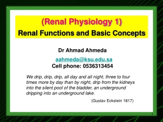 Renal Physiology 1