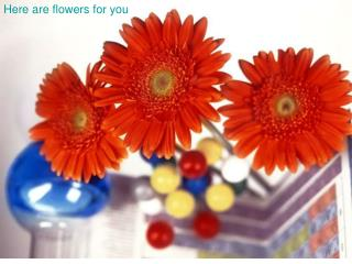 Here are flowers for you