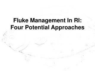 Fluke Management In RI: Four Potential Approaches