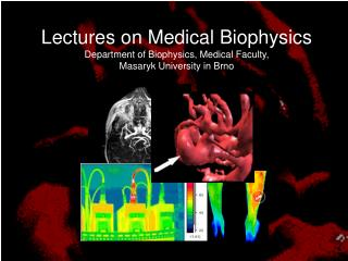 Magnetic resonance imaging (MRI) Infrared imaging (thermography)