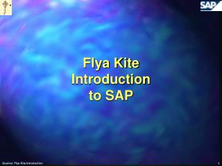 Flya Kite Introduction to SAP