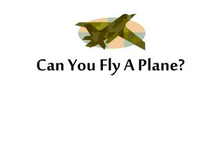 Can You Fly A Plane?