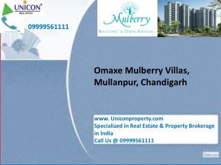 Omaxe mulberry villa Chandigarh
