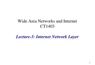 Wide Area Networks and Internet CT1403