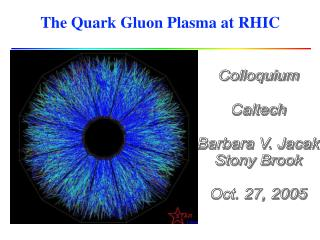 The Quark Gluon Plasma at RHIC