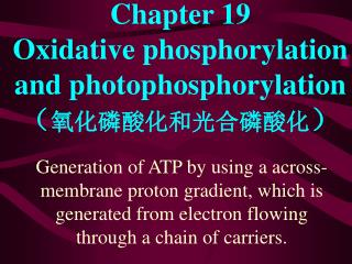 Chapter 19   Oxidative phosphorylation and photophosphorylation  ? ??????????? ?