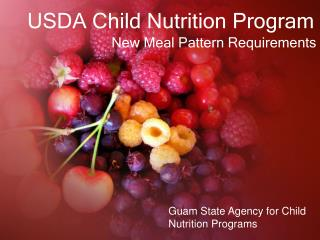 USDA Child Nutrition Program