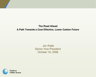 The Road Ahead A Path Towards a Cost Effective, Lower Carbon Future