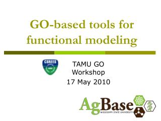GO-based tools for functional modeling