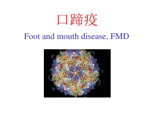 ??? Foot and mouth disease, FMD