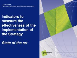 Indicators to measure the effectiveness of the implementation of the Strategy State of the art