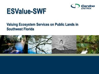 ESValue-SWF Valuing Ecosystem Services on Public Lands in Southwest Florida
