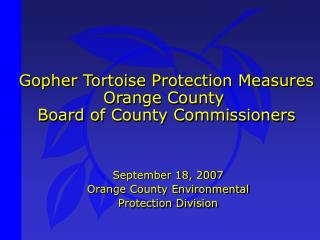 Gopher Tortoise Protection Measures Orange County  Board of County Commissioners