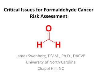 Critical Issues for Formaldehyde Cancer Risk Assessment