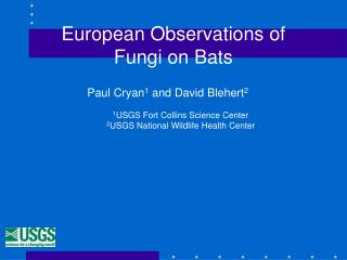 European Observations of  Fungi on Bats