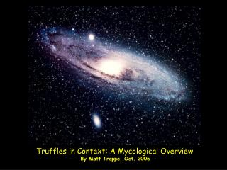 Truffles in Context: A Mycological Overview By Matt Trappe, Oct. 2006