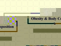 Obesity  Body Composition
