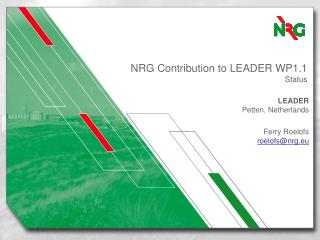 NRG Contribution to LEADER WP1.1 Status