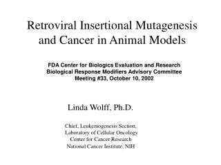 Retroviral Insertional Mutagenesis and Cancer in Animal Models