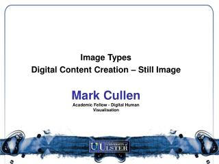 Mark Cullen Academic Fellow - Digital Human Visualisation