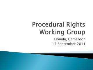 Procedural Rights  W orking Group