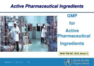 GMP  for  Active Pharmaceutical  Ingredients