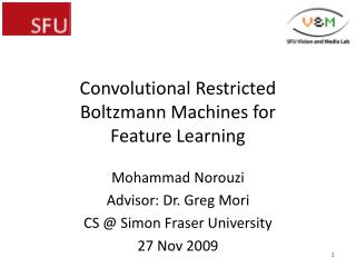 Convolutional  Restricted Boltzmann Machines for Feature Learning
